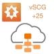Расширение лицензии для vSCG на добавление 25 точек доступа ZoneFlex