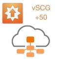 Расширение лицензии для vSCG на добавление 50 точек доступа ZoneFlex